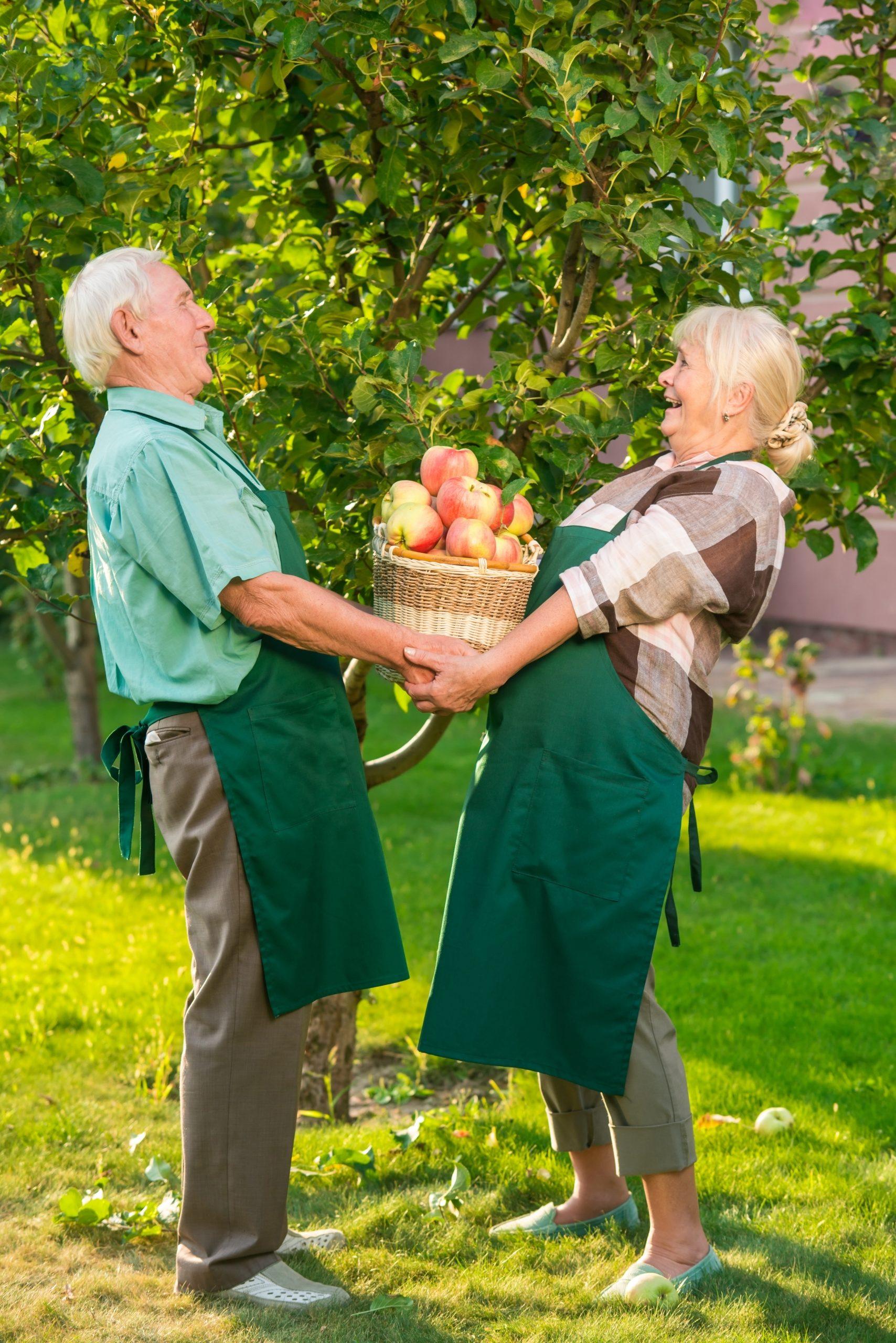 Couple holding basket